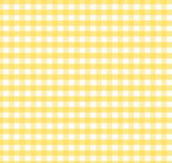Gingham Medium - Riley Blake .