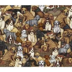 It´s a ruff life - Hunde