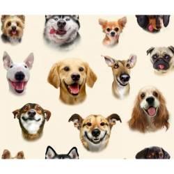 BALLENENDSTÜCK 1,25 Meter  Selfie - Elizabeth´s Studio Hunde Creme