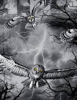 x AUSVERKAUFT WICKED FOG spooky night - by Timeless Treasures