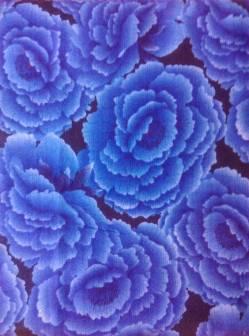 SCHLANKER BALLEN 1 Meter Hoffman -  MAGIC GARDEN Blue Roses