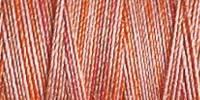 Gütermann Quiltgarn 12_4029 Farbverlauf Cotton 30 - 300 Meter