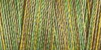 Gütermann Quiltgarn 25_4019 Farbverlauf Cotton 30 - 300 Meter