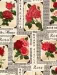Paper Rose - Timeless Treasures LATTE Mindestbestellmenge 0,50m