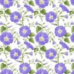 Hydrangea Birdsong -  Wicken - Henry Glass