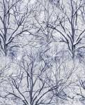 Timeless Treasures BARE TREES - Winterbäume