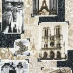 Paris Noir - Timeless Treasures